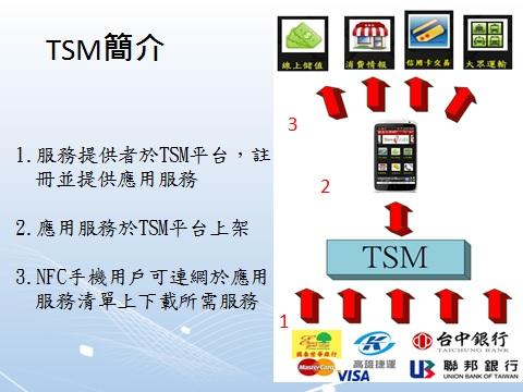 圖1 TSM示意圖